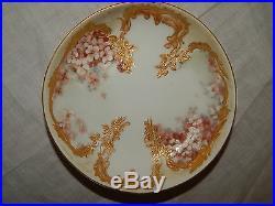 Antique Kpm Old Berlin Porcelain Cup & Saucer Flowers & Gilding
