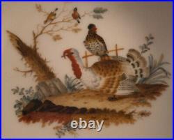 Antique Rare 20thC KPM Berlin Porcelain Bird Scene Saucer Porzellan Untertasse