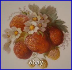 Antique Set of 11 KPM Berlin Porcelain Fruit Scene Plate s Porzellan Teller