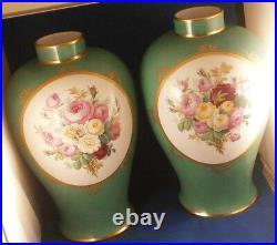 Pair Antique 19thC KPM Berlin Porcelain Floral Urn s Vase s Porzellan Vasen