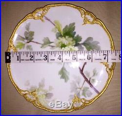 Rare Antique KPM Berlin Art Nouveau Porcelain Floral Plate